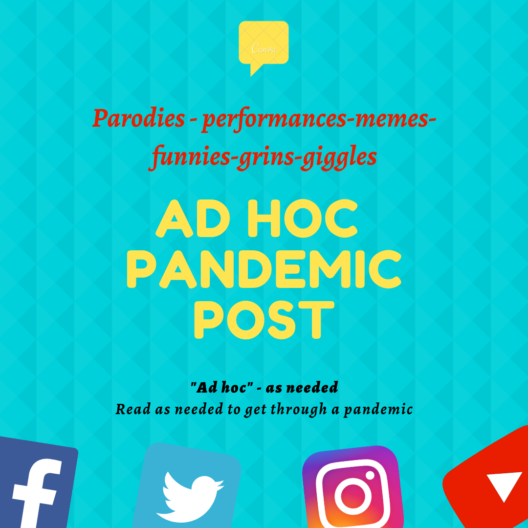 "ad hoc pandemic post logo ""paradies, performances, memes, funnies, grins, giggles Ad hoc - as needed rad as needed to get through a pandemic"